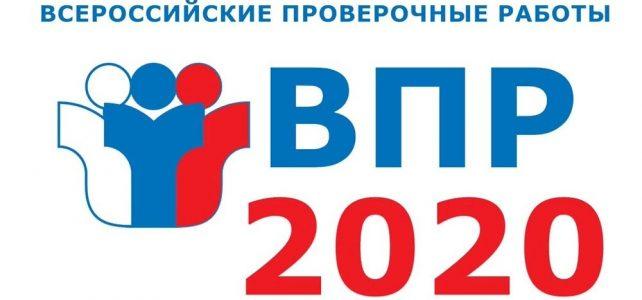 ВПР — 2020